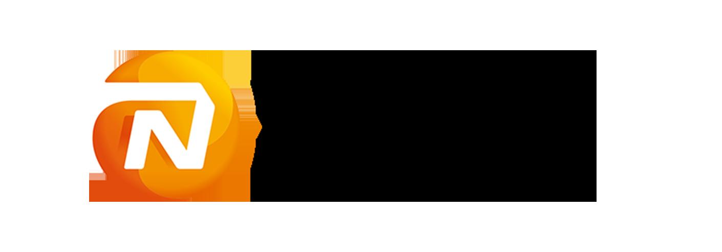 logo-flex-nn